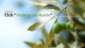 Club de Viajeros del Aceite | Un mundo de ventajas